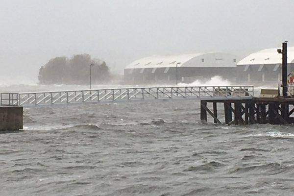 Rubb warehouse weathers storm